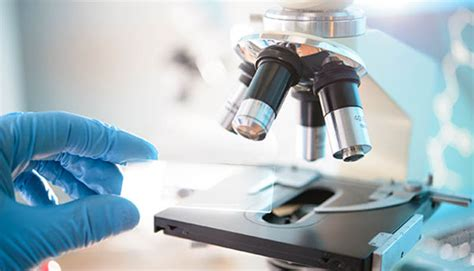 test ingresso biologia e biotecnologie 2018 cisia tolc