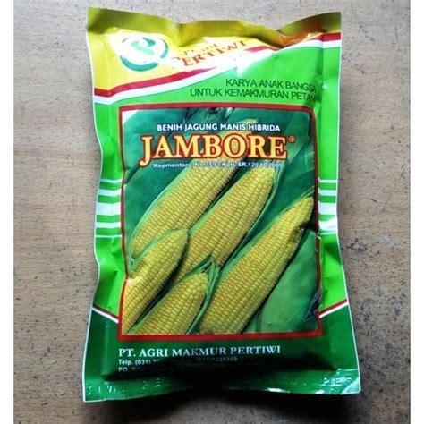 Bibit Jagung Manis Jambore jual benih jagung manis hibrida jambore
