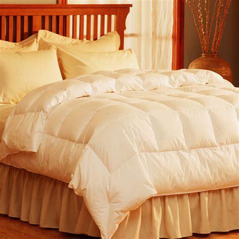 pacific coast light warmth comforter white lightweight comforter wayfair