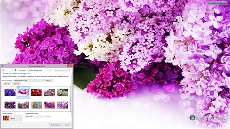 Alilac Gamis 9 free software flowers windows theme backupoh
