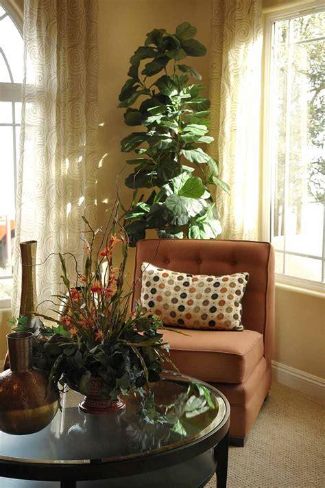 bringing  houseplants indoors  winter
