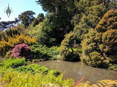San Francisco Botanical Garden At Strybing Arboretum Aboutorchids