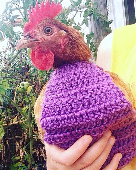 Pattern Crochet Chicken Sweater | crochet pattern crochet chicken sweater pattern with crew
