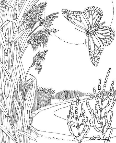 coloring pages for adults scenery printable artistic mind beautiful scenery flying butterfly