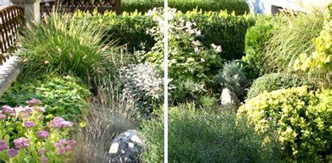 japanische gärten bildergalerie g 228 rtner gepp gartengestaltung korneuburg mistelbach wien