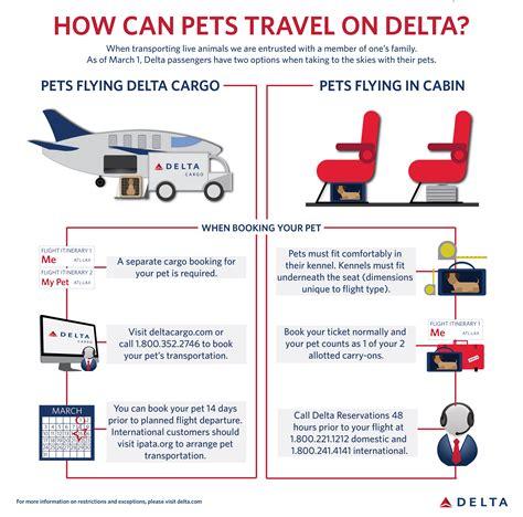 delta offers options  pet travel delta news hub