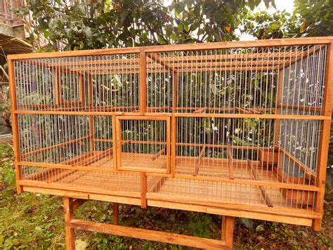 Handmade Bird Cage - bird cage handmade with nest