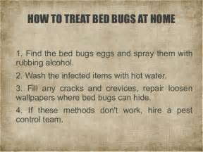 Can Rubbing Alcohol Kill Bed Bugs A Short Guide To Bed Bugs