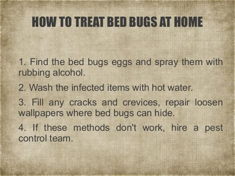 short guide  bed bugs