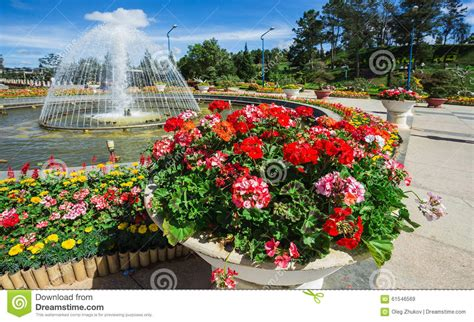 City Flower Garden In Dalat Vietnam Stock Image Image Flower Garden City