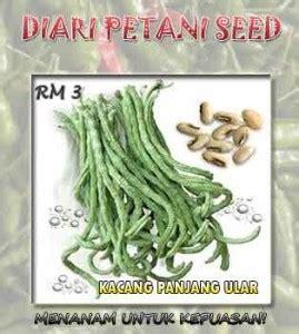 Benih Kacang Panjang Ular pertanian