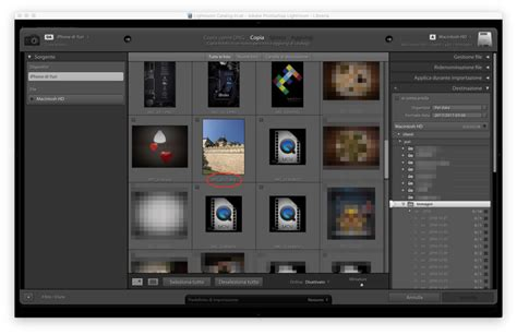 lightroom ultima version full adobe rilascia lightroom 6 14 ultima versione con licenza