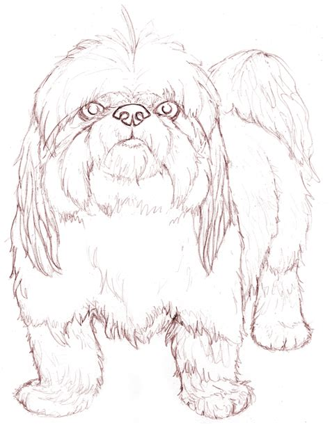 shih suh free colouring pages