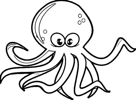 color of octopus octopus clipart colored pencil and in color octopus