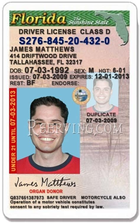 florida drivers license template archives songsrevizion