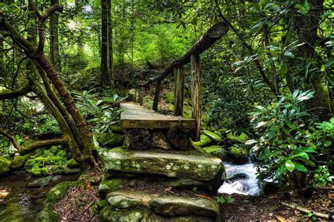 garden footbridge footbridge intimate landscape landscape