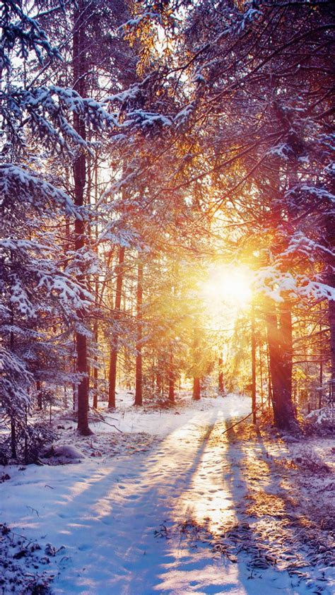 pin  cindy jones  winter backgrounds android