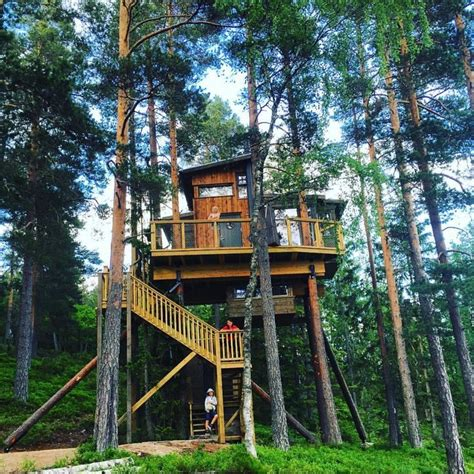 treehouse vacations 1000 images about tree houses on pinterest nature