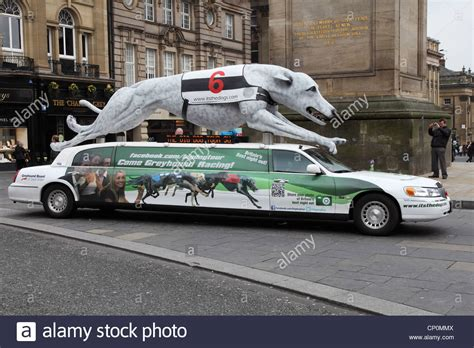 large limo stretched limo with large replica greyhound on the roof
