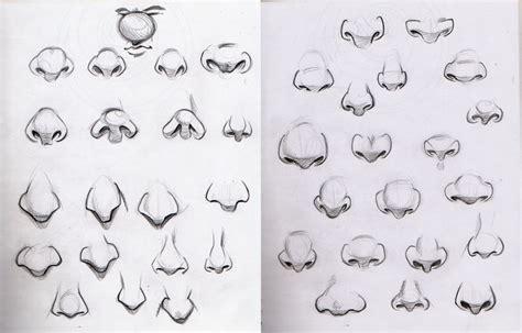 imagenes de narises a lapiz educaci 211 n pl 193 stica con mayalen dibujar la nariz