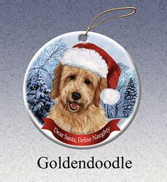 goldendoodle gift ideas 1000 ideas about goldendoodle grooming on