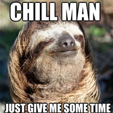 Sloth Meme Images - sloth meme baby sloths pinterest
