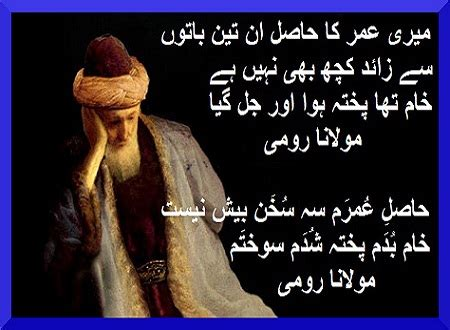 biography meaning in sindhi 12 best images about l plates on pinterest life is short