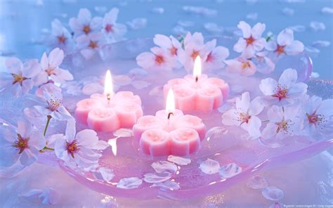 sfondi candele burning candles among the flowers wallpapers and images