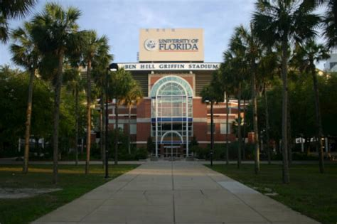 Uf Mba Concentrations by The 30 Best Master Of Finance Degree Programs Master Of