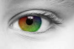 yellow eye color green blue yellow the stunning colors you can t see