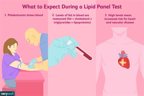 lipid panel color lipid panel uses side effects procedure results