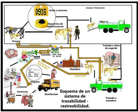 cadena productiva arroz trazabilidad aprehender la ciudad