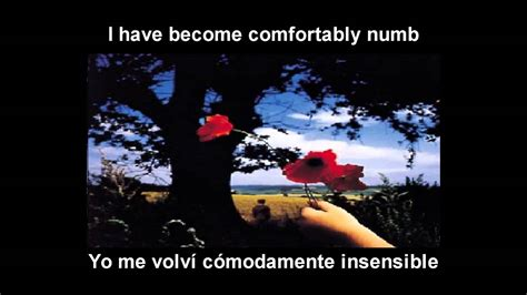 youtube comfortably numb pink floyd pink floyd comfortably numb espa 241 ol ingles youtube