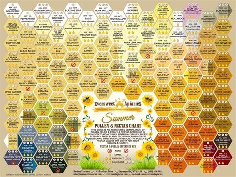 bee color summer pollen color nectar chart for honeybees to order