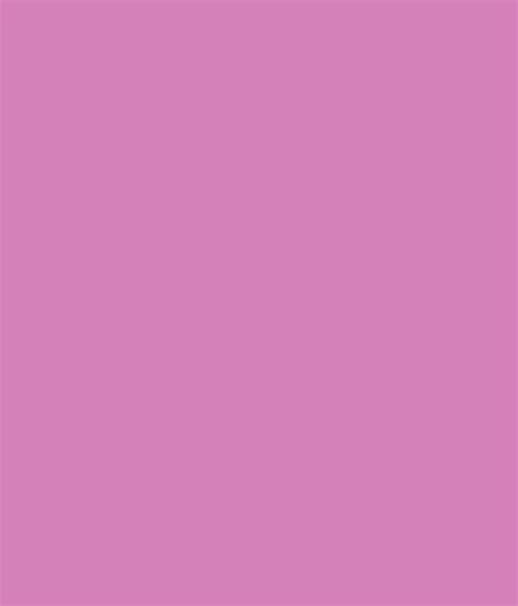 buy asian paints apcolite premium emulsion violet scream at low price in india snapdeal