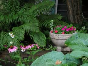 halbschatten garten shade garden wikiwand
