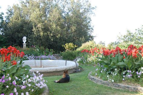 fiori per aiuole estive giardini