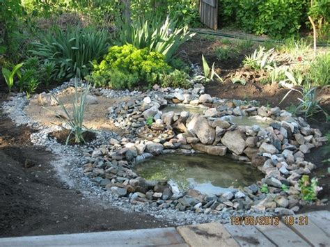 11 ways to improve your backyard landscape this summer in