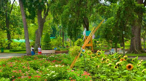 Zoo And Botanical Gardens Saigon Zoo And Botanic Garden In Ho Chi Minh City Expedia
