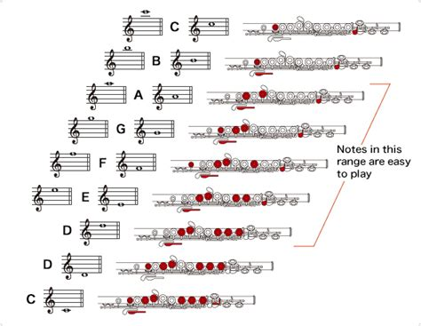 how to hold a flute diagram how to play the flute the flute musical