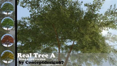 real tree   conceptdesign sims  updates