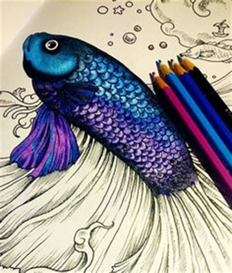 best colored pencils for anatomy coloring book 1000 ideas about coloring books on