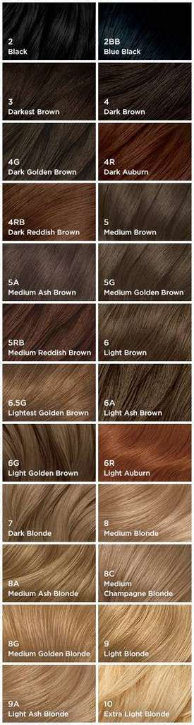 nice and easy color chart amazon com clairol nice n easy foam hair color 4rb dark