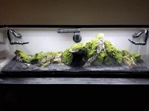 dragons den aquascape custom axolotl upgrade project