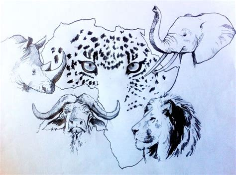 Big 5 Sketches by 151 Best Big 5 Images On Big 5 Crayon And