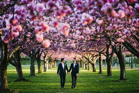 cherry blossom botanical garden botanic garden cherry tree wedding equally wed