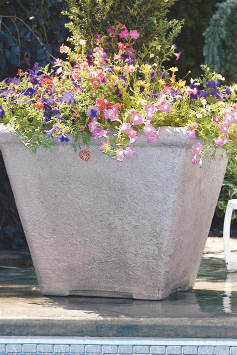 Massarelli Planters 30 quot square planter massarelli s