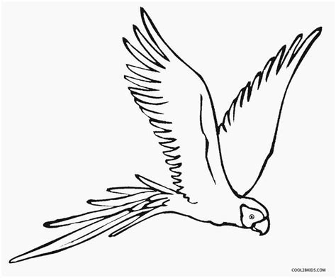 macaw bird coloring page printable parrot coloring pages for kids cool2bkids