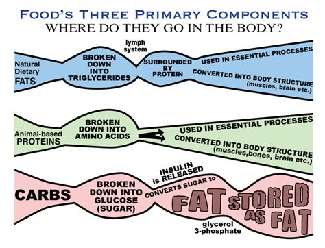 carbohydrates definition simple carbohydrates simple carbohydrate definition
