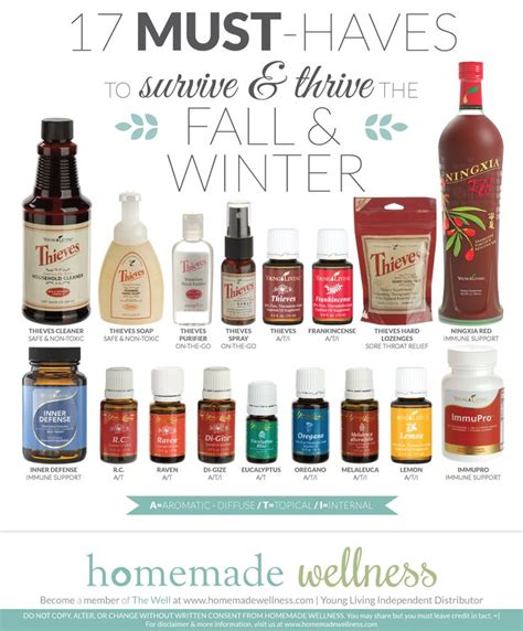 Must Aromatherapy Oils by 17 Must Haves To Survive Thrive The Fall Winter
